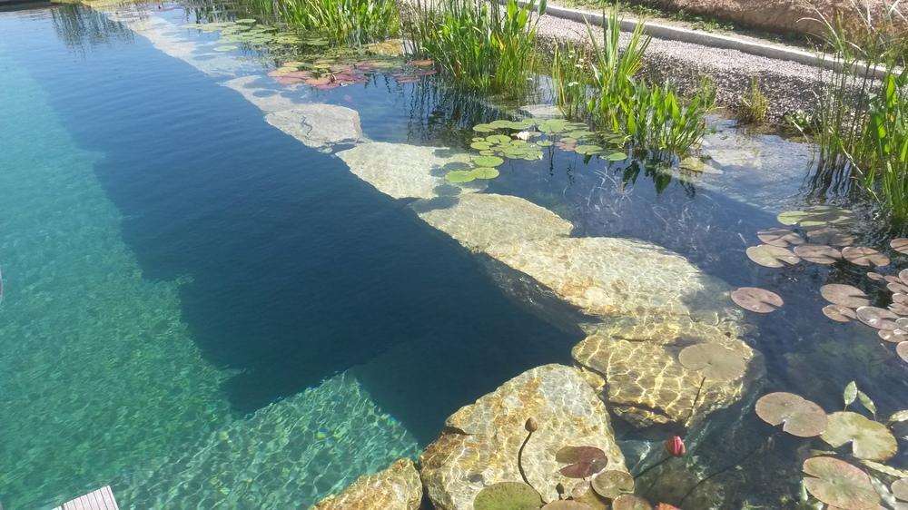 Schwimmteich Englhardt Landshut